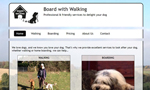 Board With Walking website thumbnail